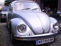 silver-bug-1.jpg