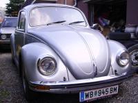 silver-bug-2.jpg