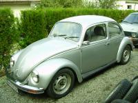 silver-bug-3.jpg