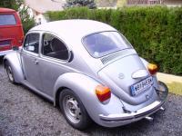 silver-bug.jpg