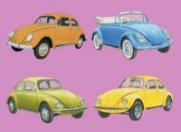 vw-beetle-collection.jpg