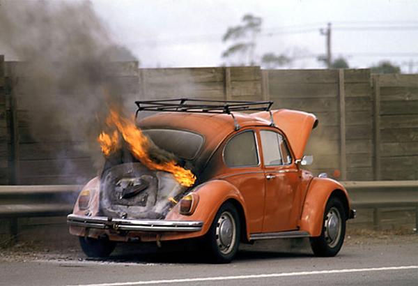 brennender-kafer.jpg