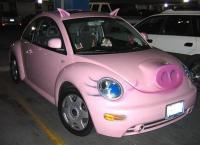 schweine-beetle.jpg