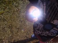 led-lenser-taschenlampe0017.JPG