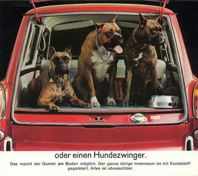 vw-variant-typ-3-werbung-mit-hunden.jpg