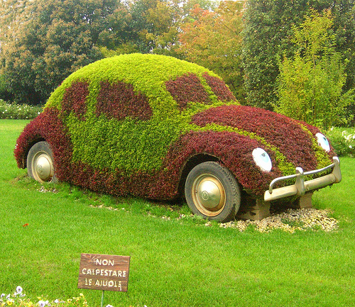 Blumen und Wiesen VW Käfer