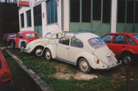viele VW Käfer