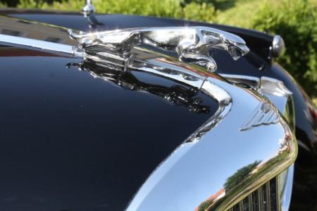 Oldtimertreffen Pinkafeld Jaguar