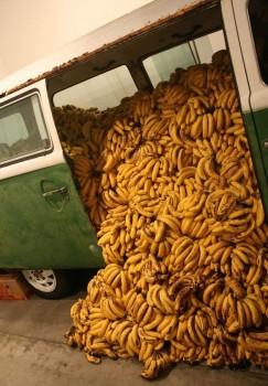 Bananen Bus