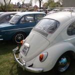 VW Käfertreffen Orth 12