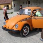 VW Käfertreffen Orth 1. Marchfelder Käferclub 2013