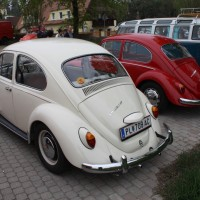 VW Käfertreffen Eggenburg 11