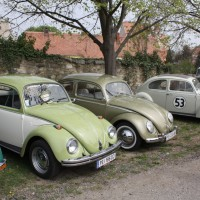 VW Käfertreffen Eggenburg 128