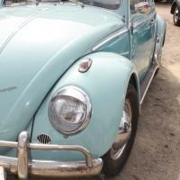 VW Käfertreffen Eggenburg 151