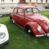 VW Käfertreffen Eggenburg 173