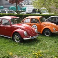 VW Käfertreffen Eggenburg 185