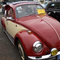 VW Käfertreffen Eggenburg 19