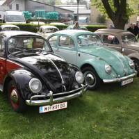 VW Käfertreffen Eggenburg 190
