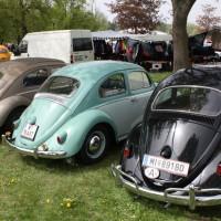 VW Käfertreffen Eggenburg 191
