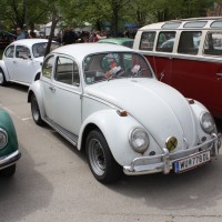 VW Käfertreffen Eggenburg 212