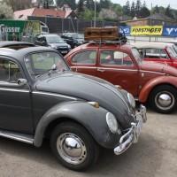 VW Käfertreffen Eggenburg 246