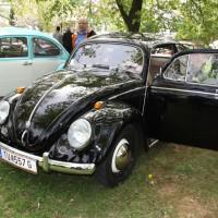 VW Käfertreffen Eggenburg 256