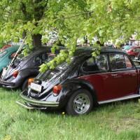 VW Käfertreffen Eggenburg 265