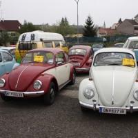 VW Käfertreffen Eggenburg 29