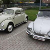 VW Käfertreffen Eggenburg 5