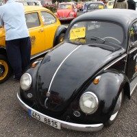 VW Käfertreffen Eggenburg 50