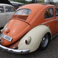 VW Käfertreffen Eggenburg 52