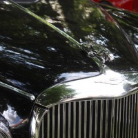 Oldtimertreffen Pinkafeld 2013 Jaguar Logo Emblem Kühlerfigur