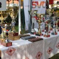 Oldtimertreffen Pinkafeld 2013 Pokale