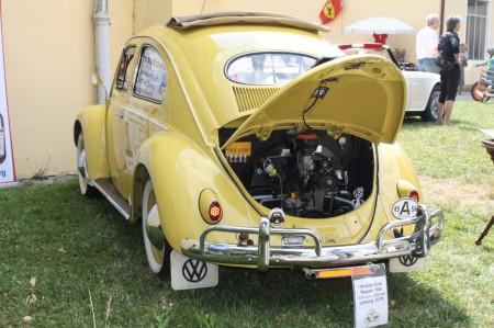 So oft werden Käfer in Deutschland gestohlen – zum Heulen!