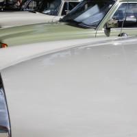 Oldtimertreffen Pinkafeld 2013 Mercedes-Benz Autos