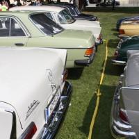 Oldtimertreffen Pinkafeld 2013 Mercedes-Benz Classic