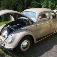 VW Käfertreffen Eggenburg 2014 0317