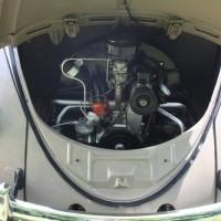 VW Käfertreffen Eggenburg 2014 0318