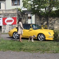 VW Käfertreffen Eggenburg 2014 178