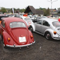 VW Käfertreffen Eggenburg 2015 21
